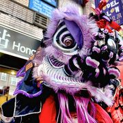 Photos: Hopping Parade Rings in Lunar New Year 4709