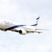 Horse Dies In Midair On El Al Flight From Belgium To JFK
