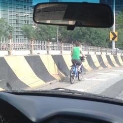 _Photos: Citi Bike Rider Takes Brooklyn Bridge Motor Vehicle Level