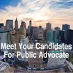 The Gothamist Guide To The Public Advocate Race