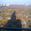 Real Estate Lobbyists Promise Luxury Towers Won't Totally Shroud Central Park In Eternal Darkness