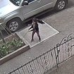 Video: Tiny Flower Thieves On The Loose In Bushwick