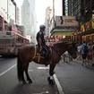 Reminder: Slap An NYPD Horse's Ass, Get Arrested