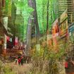 A Forest Could Be Coming To Times Square