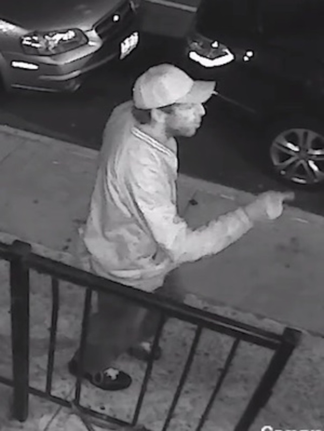 Woman Punched In The Face While Walking Dog In Chelsea