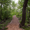 Inside The (Now Open) \'Secret\' Section Of Central Park, Closed Off Since The 1930s