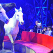 Big Apple Circus Will Be Back For Its 40th Season Next Fall
