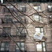 Cuomo Makes Sure NYC's Plastic Bag Fee Sleeps With The Fishes