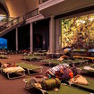 American Museum Of Natural History's Adult Sleepovers Are BACK, BABY
