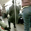 Subway Pole Leaners Must Be Stopped