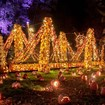 Just North Of NYC An Epic Jack O'Lantern Festival Is Steadily Blowing Minds