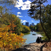 Here's Your 2017 Guide To Fall Foliage In NYC