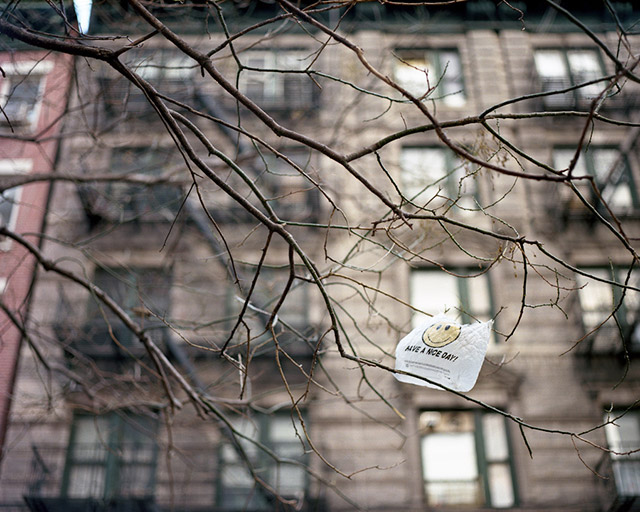 Cuomo's Proposed Plastic Bag Ban Doesn't Go Far Enough, Critics Say