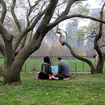 How Much Noise Should We Put Up With In NYC Parks?