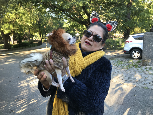 Tompkins Square Dog Park Halloween Parade Is Back On, Baby!
