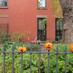 'Help Impale The Most Heads Ever' In The Great Cobble Hill Pumpkin Spike 2018