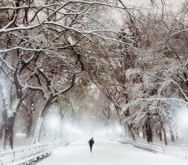 Photos: At Least NYC's Unexpected First Snow Of The Season Was Beautiful
