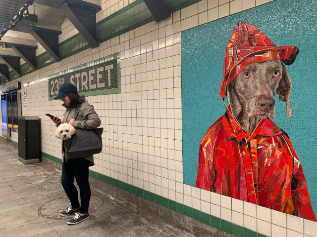 Photos: The Newly Reopened 23rd Street F/M Station Has Already Gone To The Dogs