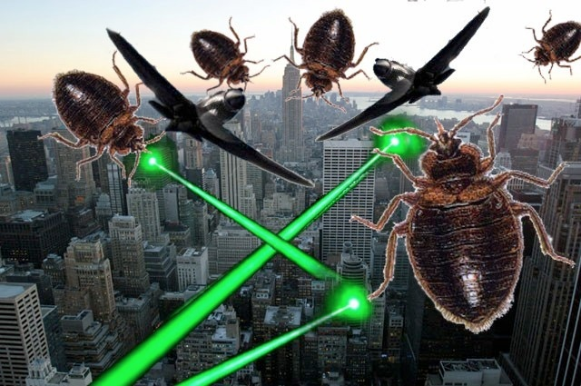 NYC Movie Theaters Could Face Fines For Bed Bug Laxity