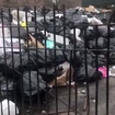 NYCHA Took Its Sweet Time Clearing These Trash Mountains From A Bronx Public Housing Complex