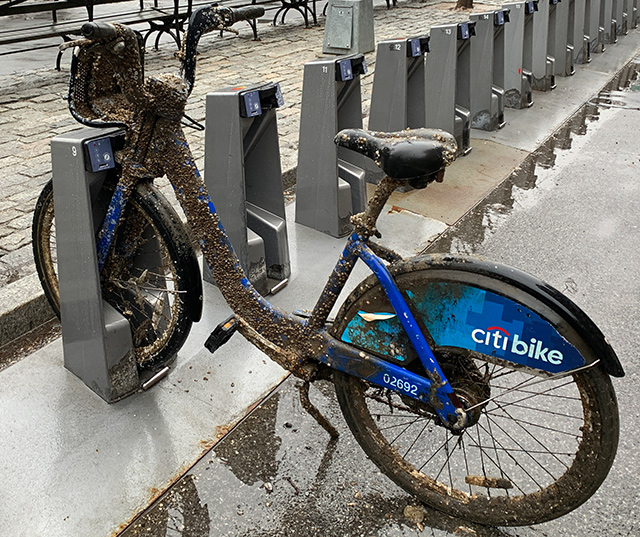This Mysterious Citi Bike Covered In Barnacles & Shells Must Have Some Stories To Tell