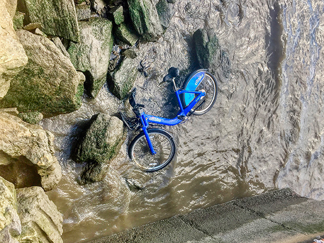 Barnacle Bike Was Likely In The Hudson River Since Last Summer