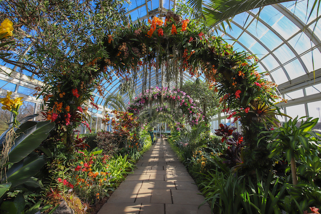 Photos: Inside The New York Botanical Garden's Dreamy, Singapore-Inspired Orchid Show
