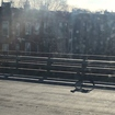 'Not Trying To Be Easter Dinner': A 'Loose Lamb' Spotted On Gowanus Expressway