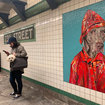 Hey, Don't Deface The William Wegman Weimaraner Subway Mosaics