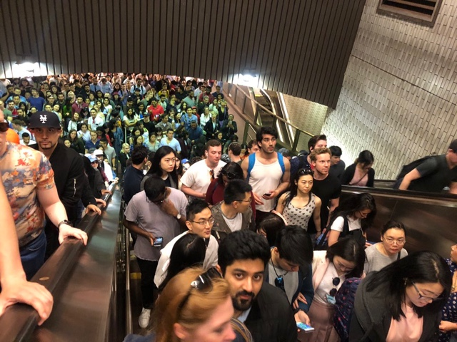Dangerous Overcrowding Prompts NYPD To Halt Subways To Roosevelt Island And Its Cherry Blossom Festival