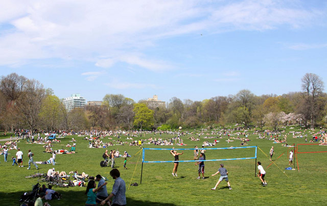 central park springtime. 92 in Central Park smashed
