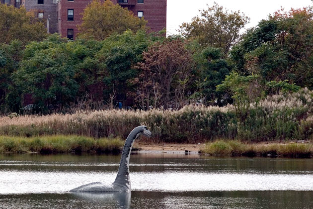 Nessie in New York