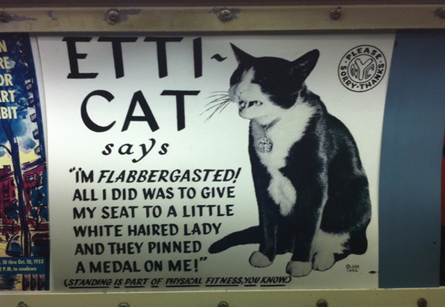 The Etti-Cat of New York