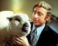 the australian sheep farmer