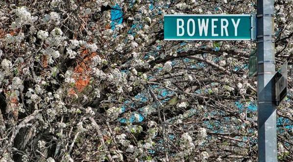 2007 04 Flowersbow