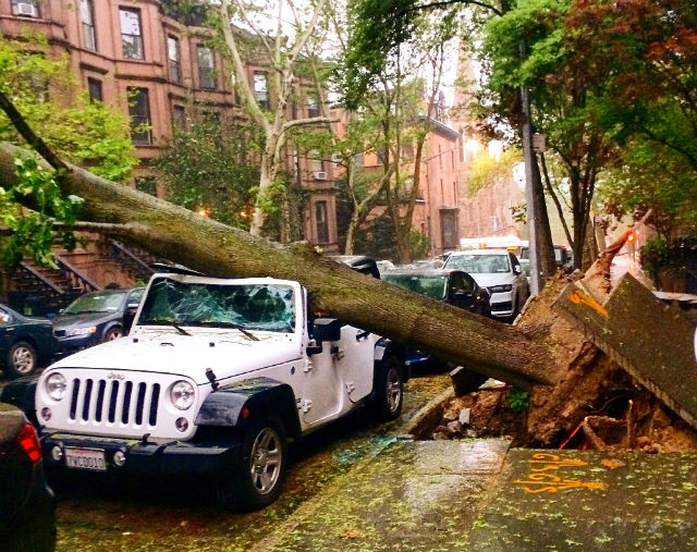 Clean-up under way after deadly storms pound north-east United States
