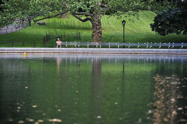 Body found floating in Central Park pond