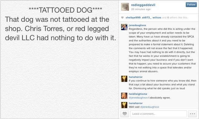Guy who tattooed his dog gets fired