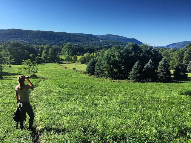 The Best Nature Hikes Close To NYC